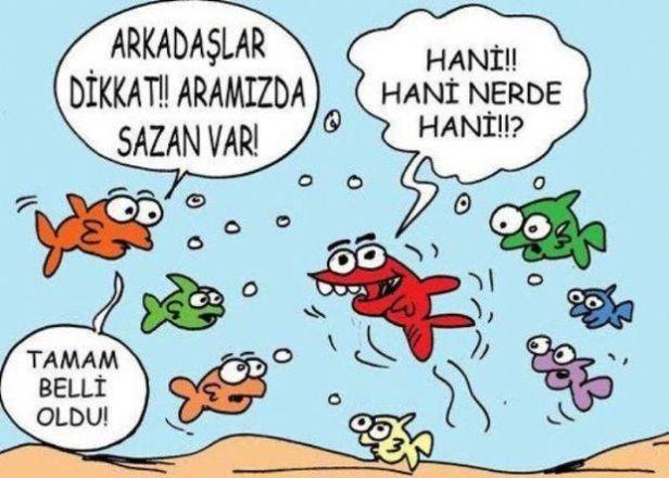karikatur-aramizdaki-sazan-2886-I3